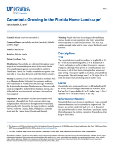 Carambola Growing in the Florida Home Landscape Jonathan H. Crane 1