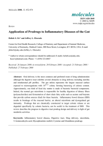 Application of Prodrugs to Inflammatory Diseases of the