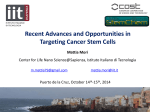Recent Advances and Opportunities in Targeting Cancer Stem Cells