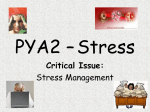 PYA2 – Stress Critical Issue: Stress Management