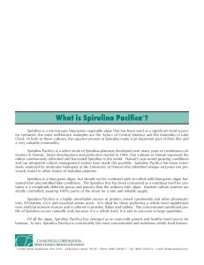 What is Spirulina Pacifica