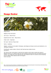 Naaga Keshar Agro Products Manufacturers