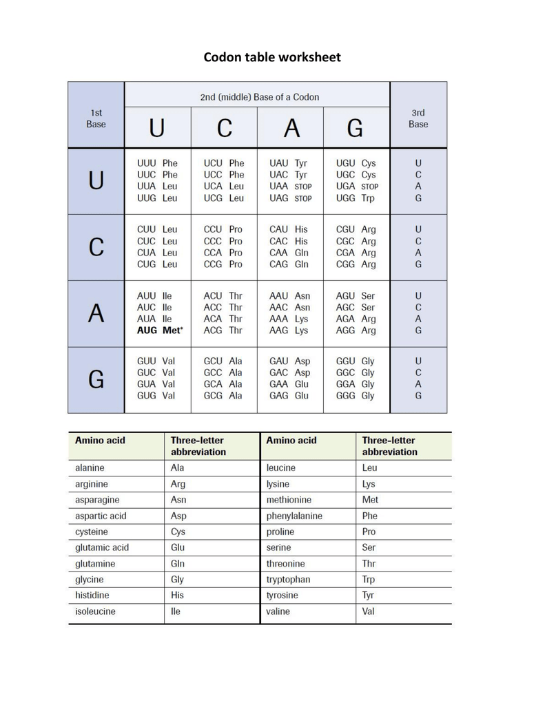 Codon table worksheet