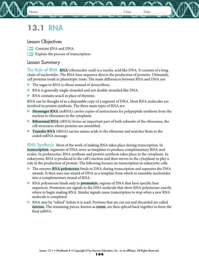 13.1 RNA - Hackittbio