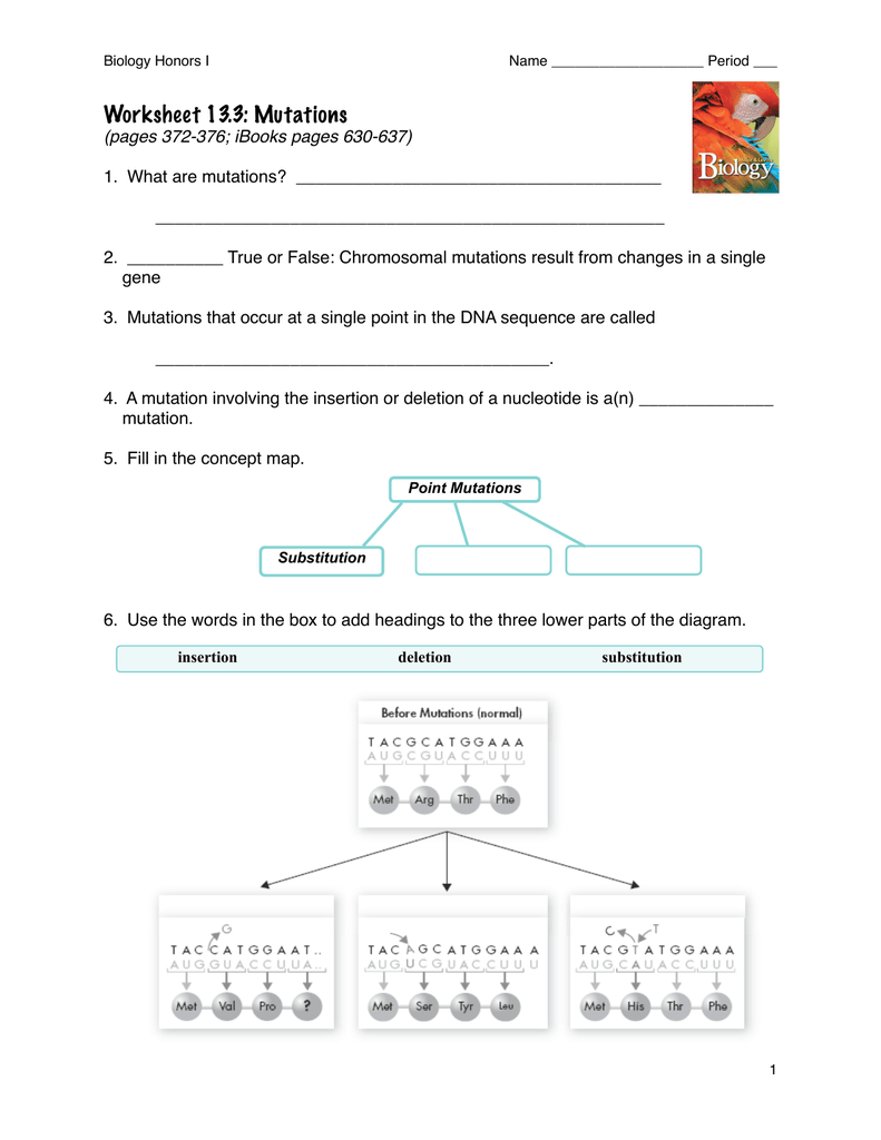 Mutation Concept Map.Worksheet 13 3
