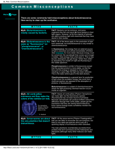 BL Web - The Bioluminescence Web Page
