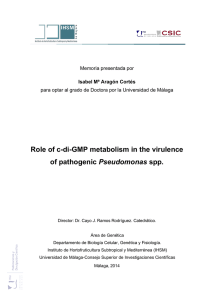 Role of c-di-GMP metabolism in the virulence of pathogenic