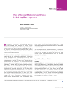 Role of Special Histochemical Stains in Staining