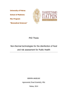 PhD Thesis Non-thermal technologies for the disinfection of food