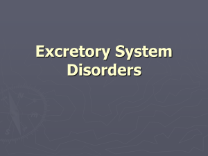 Excretory System Disorders