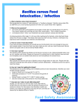 Bacillus Cereus Food Intoxication / Infection