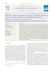 Isolation of antibacterials from the mangrove, Avicennia marina and