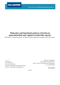 Molecular and functional analyses of lectins in