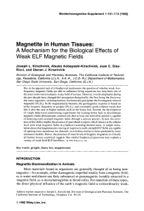 Magnetite in human tissues - Geological and Planetary Sciences