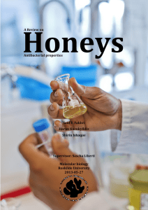 B.SC Project A review on Honeys antibacterial propertiess