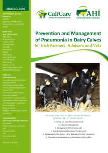 Prevention and Management of Pneumonia in Dairy Calves STAKEHOLDERS