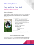 Dog and Cat First Aid