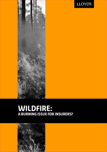 Wildfire: A burning issue for insurers?