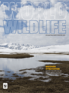 discover kyrgyzstan - World Wildlife Fund