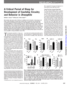 A Critical Period of Sleep for Development of Courtship Circuitry and