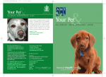 Your Pet - Animal Health Trust