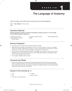 The Language of Anatomy - Holly H. Nash