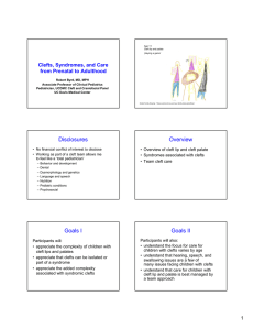 Clefts, Syndromes, and Care from Prenatal (6 slide per page)