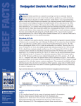 Conjugated Linoleic Acid and Dietary Beef