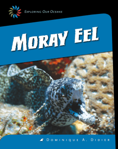 Moray eel PDF book