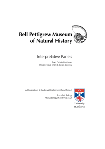 Bell Pettigrew Museum of Natural History - synergy