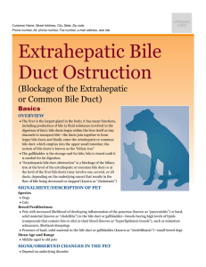 Extrahepatic Bile Duct Ostruction