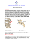 Spondylolysis and Spondylolisthesis of the Lumbar Spine Introduction:
