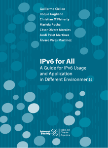 A Guide for IPv6 Usage and Application