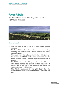 River Ribble - Mersey Basin Campaign