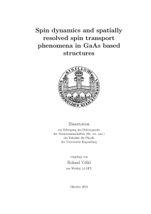 Spin dynamics and spatially resolved spin transport phenomena in