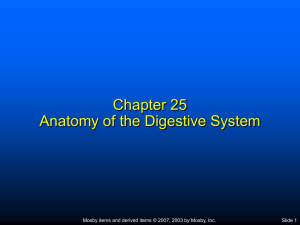 Chapter 7 Body Systems