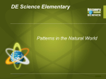 DE Science Elementary Patterns in the Natural World