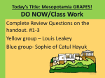HSS_quiz 2-Mesopotamia-GRAPES pptx-1