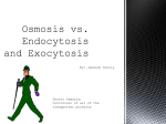 Osmosis vs. Endocytosis and Exocytosis