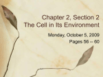 Chapter 2, Section 2 The Cell in Its Environment