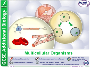 Multicellular Organisms - Thomas A. Stewart Secondary School