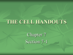 THE CELL HANDOUTS - Wildcat Chemistry
