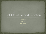 Ch. 7 Cell Structure and Function