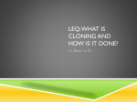 Leq: what is cloning and how is it done?