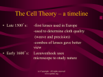 cell_theory timeline 2 (2)