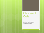 Chapter 1 Cells