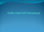 Cells and Cell Structure
