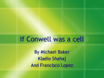 If Conwell was a cell