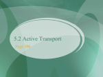 Differentiate between active and passive transport