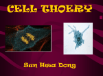 CELL THOERY Sun Hwa Dong
